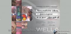 Сертификат Тренинг по окрашиванию, Wella professionals, 2011 г.