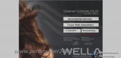 Сертификат Essential Color, основы цвета, Wella professionals, 2014 г
