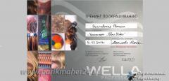 Сертификат Тренинг по окрашиванию, Wella professionals, 2013 г