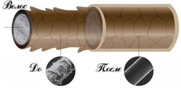 Структура волоса при кератировании